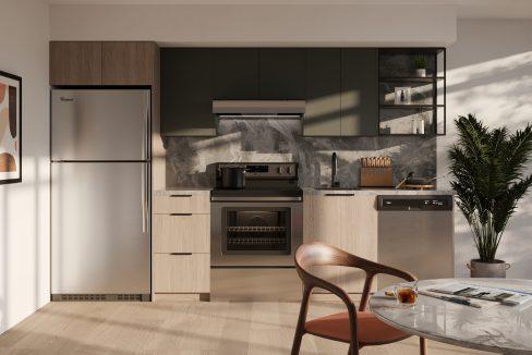 Dark Upgraded Kitchen